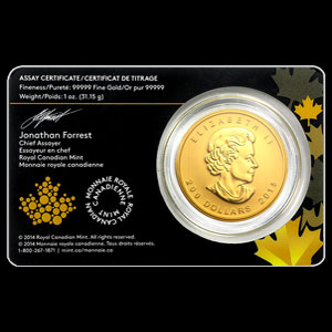 Canadian Gold Growling Cougar 1 OZ Obverse